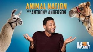 Animal Nation w Anthony Anderson Horizontal