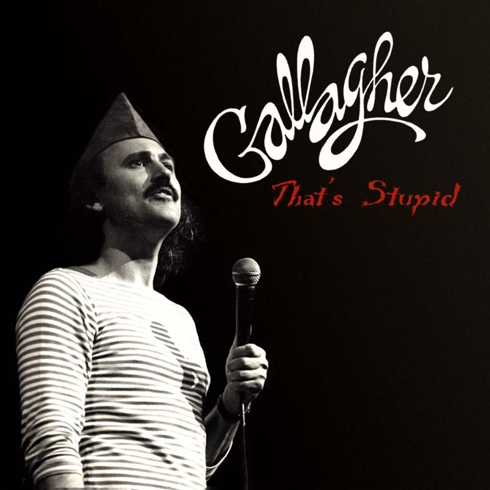 Gallagher ThatsStupid 2048x2048