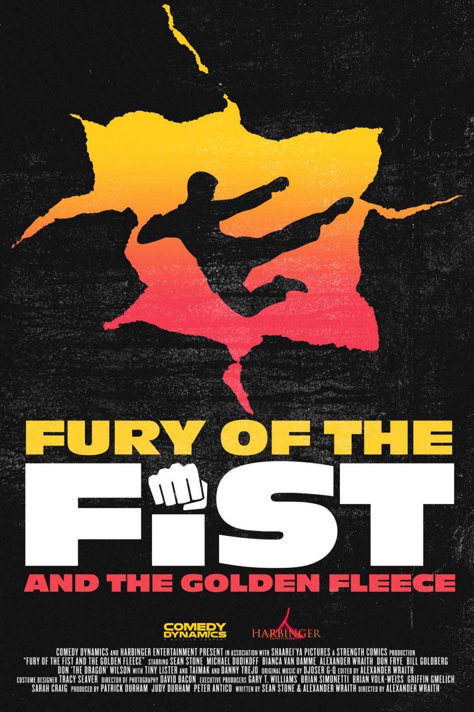 FuryTheFist DVDAlt